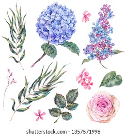 Watercolor vintage set floral elements, roses, lilac, blue hydrangea and wildflowers. Natural botanical collection isolated on white background