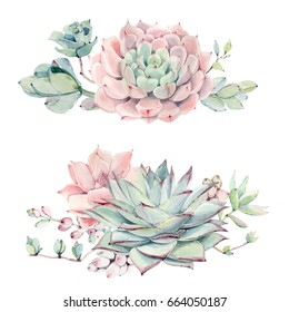 Watercolor vintage succulents bouquet. Spring or summer decoration floral bohemian design. 