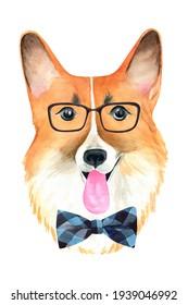 Watercolor Welsh Corgi. Intelligent dog with glasses. Dog nerd. Clever dog portrait