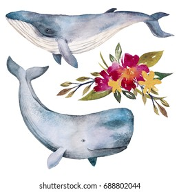 Watercolor whales and flowers illustration