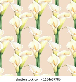 Watercolor white calla lilies flower seamless pattern on light background. Elegant botanical drawing for decor, wallpaper, textile design.