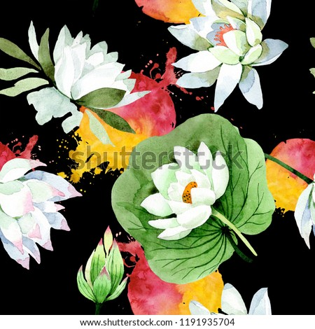 Watercolor White Lotus Flower Floral Botanical Stock Illustration