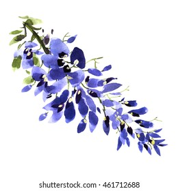 Watercolor wisteria flower background. Drawn nature painting art.
