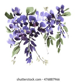 Watercolor wisteria flower with leaf branch isolated on white background. Hand drawn nature painting. Vintage design for greeting card, postcard, poster, collage, fashion fabric.