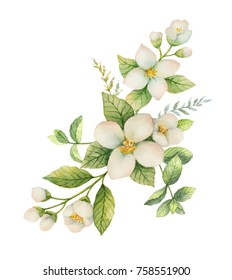 Watercolor wreath of Jasmine and mint isolated on a white background. Floral illustration for design greeting cards, wedding invitations, natural cosmetics, packaging and tea.