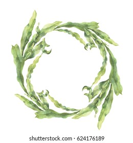 Watercolor wreath with laminaria. Hand painted underwater floral illustration with algae leaves branch isolated on white background. For design, fabric or print
