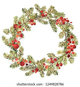 Watercolor wreath of spruce and red holly berries for Christmas decoration