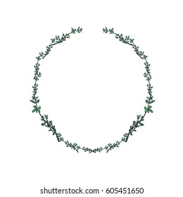 Watercolor wreath with thyme.