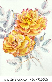 watercolor yellow roses