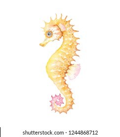 Watercolor yellow Seahorse, cute isolated illustration on white background.