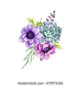 Watercolors, anemones, succulents