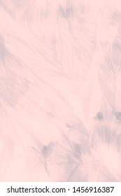 Pink Grey Watercolour Images, Stock Photos & Vectors