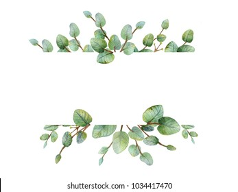 Watercolour green eucalyptus banner on white background. Spring or summer flowers for invitation, wedding or greeting cards.