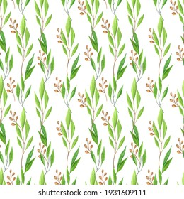 Watercolour hand drawn eucalyptus leaves pattern.