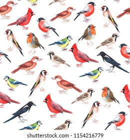 Watercolour hand painted seamless pattern with colourful birds. Use for wrapping paper, notes cover, as a background and ecology decoration, Pattern for birdwatching and ornithology hobby, products .