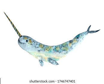 Watercolour narwhal element isolated in white background. Sea creatures  design for world ocean day