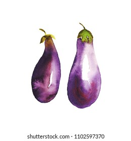 Watercolour painted eggplant. violet vegetable natural hand painted illustration. Two aubergines, paper texture, abstract shape. loose brushstroke. Healthy food, and vegetarian lifestyle painting.