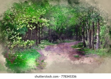 Watercolour painting of Beautiful forest landscape scene with lush green trees and foliage