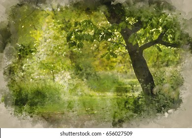 Watercolour painting of Beautiful shallow depth of field fresh landscape of English forest and countryside in Spring sunshine