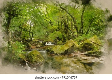 Watercolour painting of Landscape iamge of river flowing through lush green forest in Summer