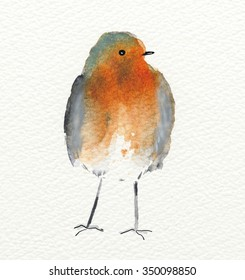 Watercolour showing a fluffy and cute robin redbreast.