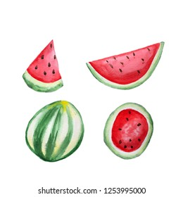 Watermelon hand drawn watermelon isolated on white background