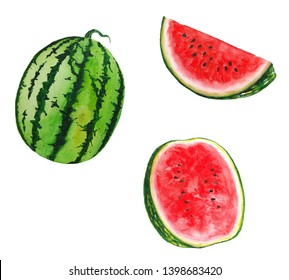 Watermelon Watercolor illustrations set of summer botanical decorations greeting card design