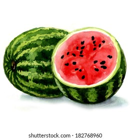 watermelon. watercolor painting on white background