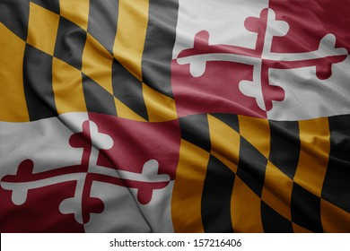 Waving colorful Maryland flag