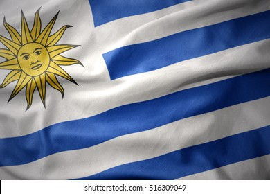 waving colorful national flag of uruguay.