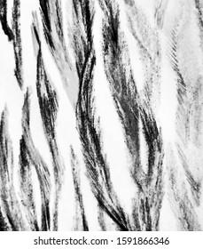 Wavy Zebra Print.  Zebra Geometric. Metal, White Animal Skin Sketch. Dark, Ivory Minimal Sketching. Royal Bengal Tiger. Zebra Ornate Background. Fashion Striped Pattern.