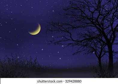 Waxing moon night scene over the mountain