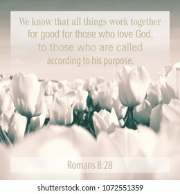 according to his purpose images stock photos vectors shutterstock
