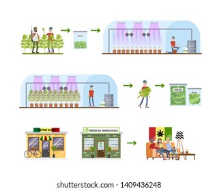 Weed production process. From harvest to the shop. Medical marijuana making. Cultivation and irrigation. Isolated  flat illustration