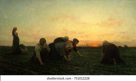 THE WEEDERS, by Jules Breton, 1874, French painting, oil on canvas. Women peasants pulling up thistles and weeds at twilight near, Courrieres, in northern France. His beaux arts realist paintings of r