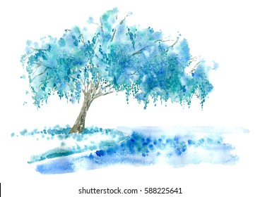Weeping willow on the lake. Blue tree. Watercolor hand drawn illustration