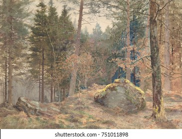 IN A WELSH PINE WOOD, by James Thomas Watts, 1891, British watercolor painting. Watts was influenced by Ruskin and the Pre-Raphaelites. This small detailed landscape is a masterpiece of English waterc