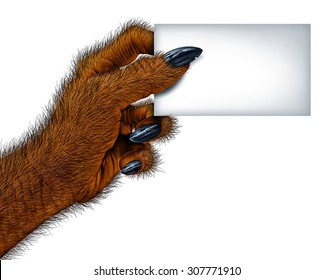 Werewolf hand holding a blank card sign as a creepy creature for halloween or scary symbol with textured hairy and textured skin with cursed wolf monster fingers on a white background.