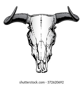 Western Bull Skull is an illustration of a bull or steer skull often used to represent a United States western or cowboy theme.