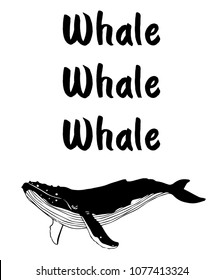 Whale memes and jokes