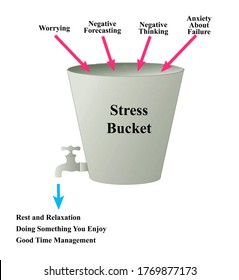 What Fills your Stress Bucket