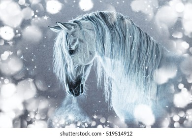 White Andalusian horse in a contrasting light and surrounded by patches of light and snow, with the steam from his nostrils. Winter picture, pastel, monochrome. Magic Christmas and New Year picture.