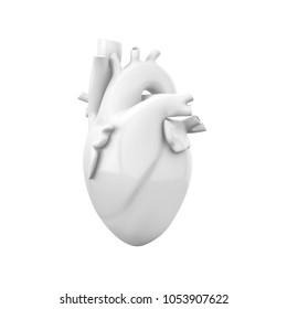 White blank heart, anatomical model isolated on white background. 3D illustration.