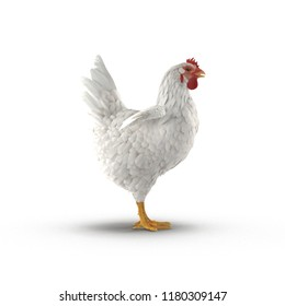 White Chicken or Hen on bright. Side view. 3D illustration