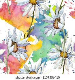 White daisy flower. Floral botanical flower. Seamless background pattern. Fabric wallpaper print texture. Aquarelle wildflower for background, texture, wrapper pattern, frame or border.