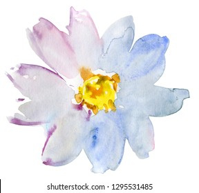 White daisy flower. Floral botanical flower. Isolated daisy illustration element. Wild spring leaf wildflower isolated. Watercolor background illustration set