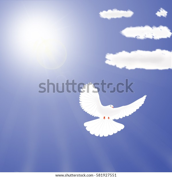 white dove flying from the sky, against the bright sun