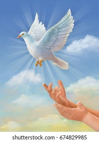 White dove, symbol of peace, flying through the sky. Original digital illustration, painted using a graphic tablet.