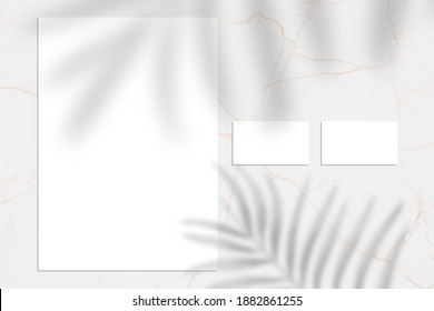 White empty business card and letterhead mock up, Shadow overlay, stationery mockup, add your design multiply effect