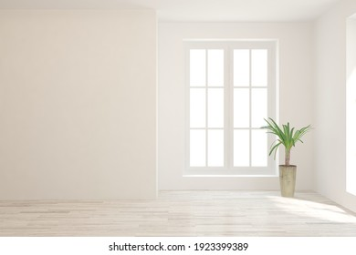 White empty room with green home plant. Scandinavian interior design. 3D illustration